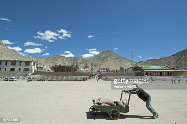 India Ladakh Leh man pushing cart in mountain range in background