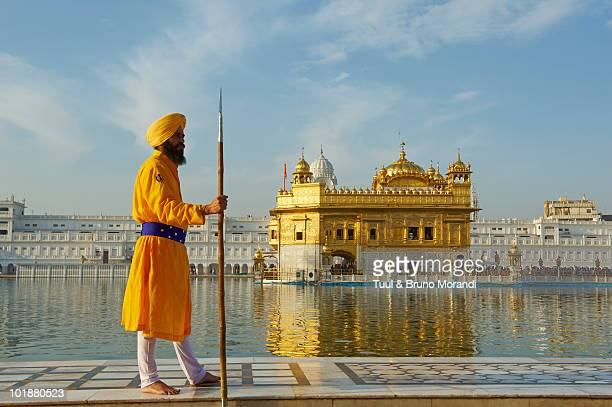 india, penjab, amritsar, golden temple - golden temple india stock pictures, royalty-free photos & images