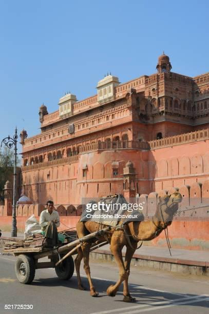 India, Rajasthan, Bikaner, Camel cart and Junagarh fort