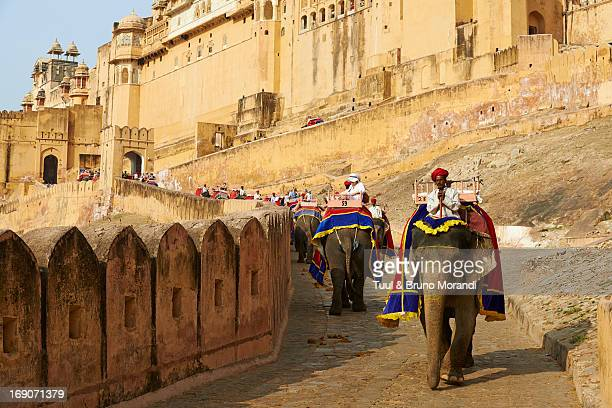 India, Rajasthan, Jaipur the pink city, Amber fort