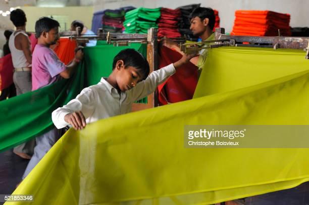 India, Rajasthan, Saree factory