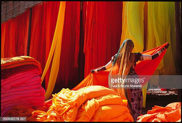 india, rajasthan, woman in sari factory - rajasthan stock pictures, royalty-free photos & images