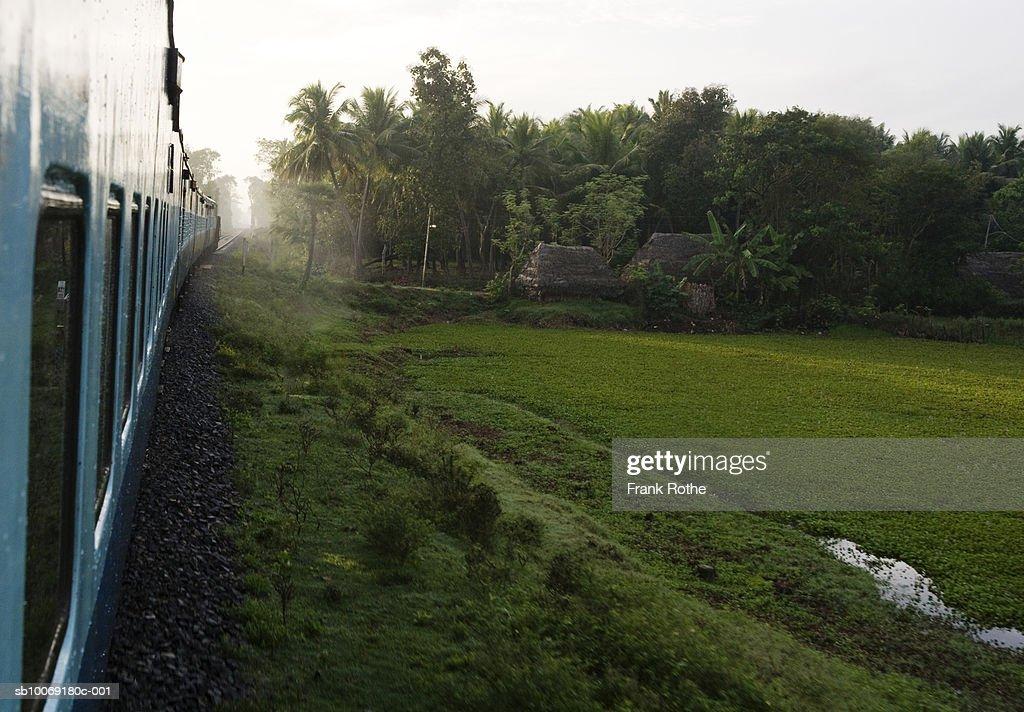 India, Train passing through field : Stockfoto