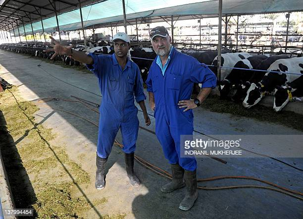 Indiafarmfoodmilksector FEATURE by Phil Hazlewood British national Edmund VincentPiper manager of Bhagyalaxmi Dairy Farm listens to his assistant...