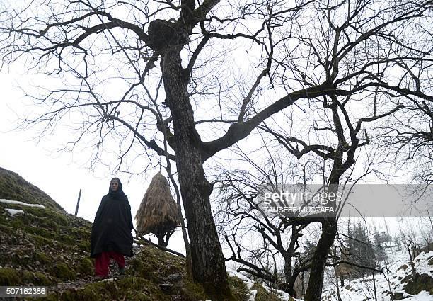 IndiaKashmirPakistanunrestjusticeFOCUS by Parvaiz BUKHARI This photo taken on December 22 2015 shows Begum Jan walking home in Dardpora a Himalayan...