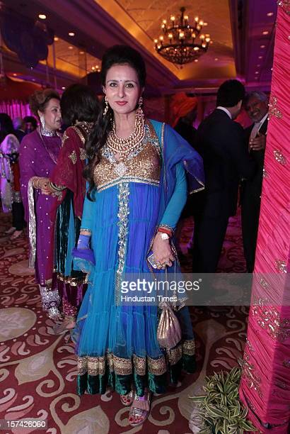 indian marriage reception ストックフォトと画像 getty images