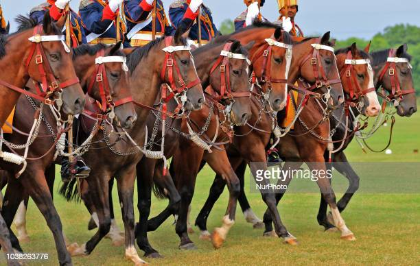 Indian army soldiers march in mounted parade with their horses during the centenary celebration of Battle of Haifa 19182018 at 61 Cavalry Ground in...