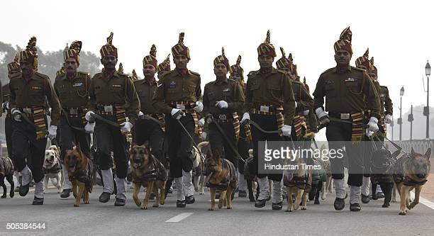 Indian Army's Remount and Veterinary Corps dogs trained for bomb disposal and counterinsurgency take part during rehearsal for the Republic Day...