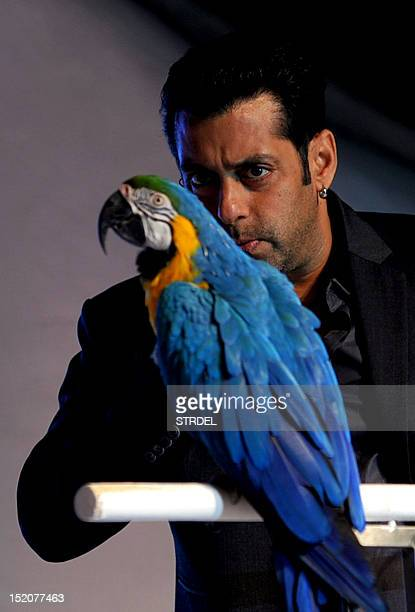"Indian Bollywood actor Salman Khan speaks to a parrot during the launch of the Indian Reality Show ""Bigg Boss"" Season 6 in Mumbai on September 16..."