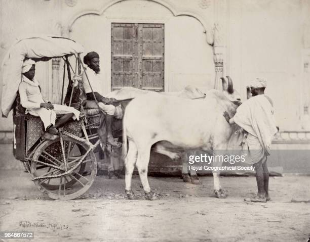 Indian bullock 'dandi' or carriage There is no official date for this image The partnership between Shepherd Robertson lasted from about 18623 India...