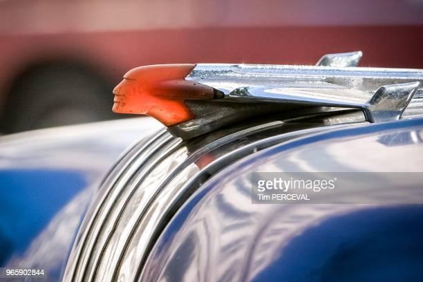 Indian chief Speedster Havana