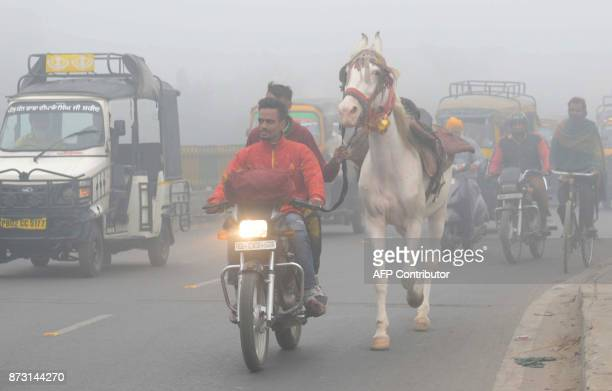Indian commuters lead a horse on a road as they make their way through heavy smog in Amritsar on November 12 2017 Large swathes of north India and...