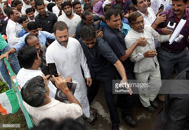 Indian Congress party's vice president and leader Rahul Gandhi walks towards Alfred Park to scatter rose petals as to pay his respects at a statue of...