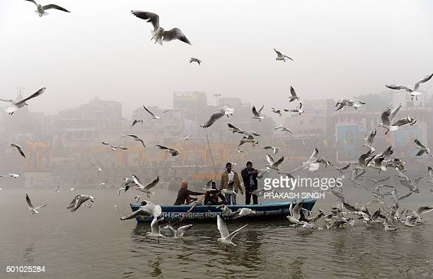 Indian devotees and tourists feed birds in frint of a decorated Dashashwamedh ghat on the banks of the River Ganges in Varanasi on December 12 ahead...