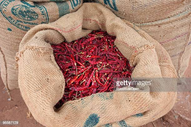 Indian dried red chilli spices displayed in a sack on December 22 2009 in Varkala near Trivandrum Kerala India