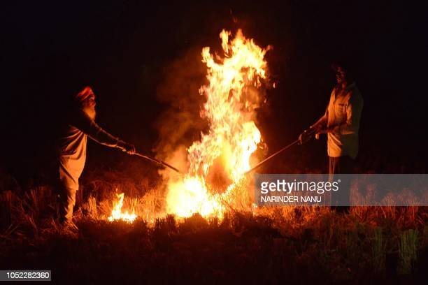 Indian farmers burn rice straw after harvesting the paddy crops in a fields on the outskirts of Amritsar on October 16 2018 Smog levels spike during...