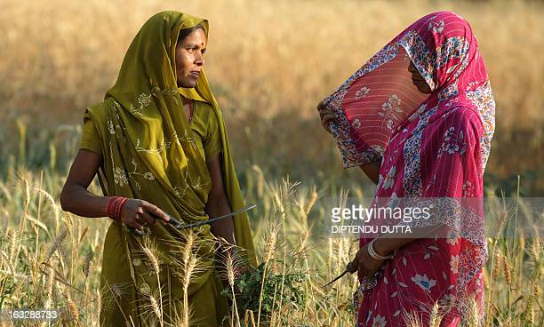 Indian farmers speak as they work in a wheat field on the outskirts of Allahabad on March 23 2010 Agriculture is one of the strongholds of the Indian...