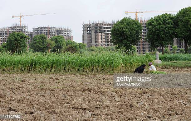 Indian farmers work in a field close to a new development near Ahmedabad on June 25 2012 Agriculture experts expressed concerns over shrinking of...