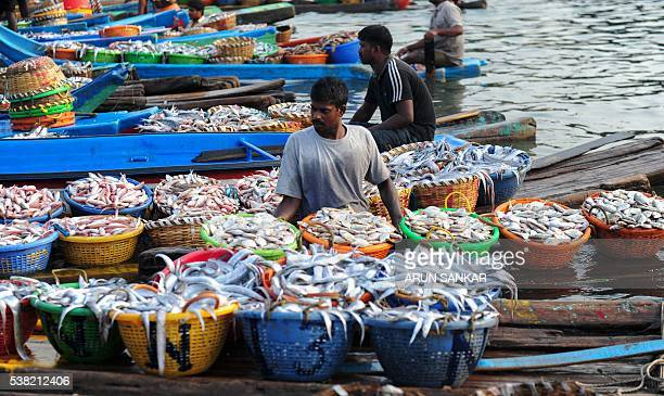 Indian fishermen unload baskets of fish from boats at a harbour in Chennai on June 5 as fishermen return with their catch after a 45day fishing ban...