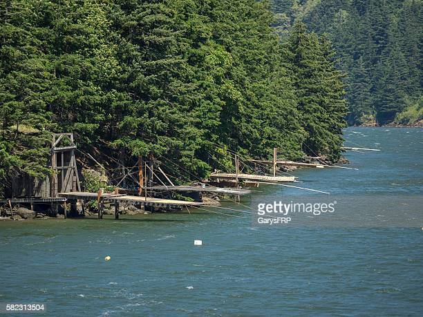 indian fishing platforms on columbia river washington state tree background - oregon us state stock pictures, royalty-free photos & images