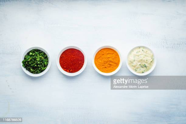 indian food: species used in dishes and accompaniments, coriander, curcuma, paprika and raita - sauce photos et images de collection