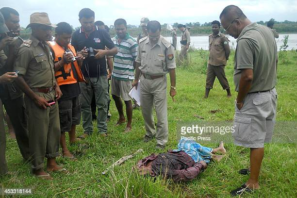 Indian Forestry Department officials stand beside the body of an alleged rhino poacher near the Lohoroni Camp in Kaziranga National Park 250 kms East...