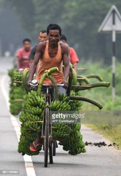 Indian fruit vendors use bicycles to bring bananas to be sold at Daranggiri banana market in the Goalpara district of the northeastern state of Assam...