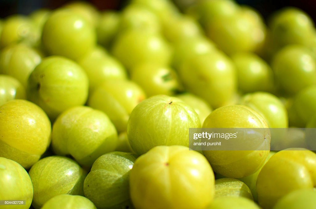Indian Gooseberry, Amla (Emblica Officinalis Loca) Herbal Medicinal Fruit, India. : Stock Photo
