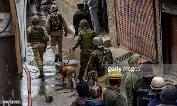 Indian government forces walk with their sniffer dog outside the war ravaged residential house after a gun battle between Indian government forces...