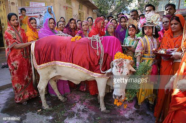Indian Hindu devotees dressed as Lord Krishna and Radha gather during a Gho Puja cow worship on the occasion of Gopal Ashtami in Jodhpur on November...