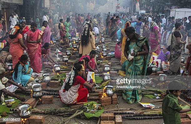 Indian Hindu devotees prepare a traditional sweet dish on open fires during an event marking Pongal festival in Mumbai on January 15 2016 Pongal...