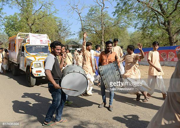 Indian Hindu drummers dance in front of a truck carrying owner and trustee of Parsana Charitable Trust Vijaybhai Parsana and his cow 'Poonam' before...