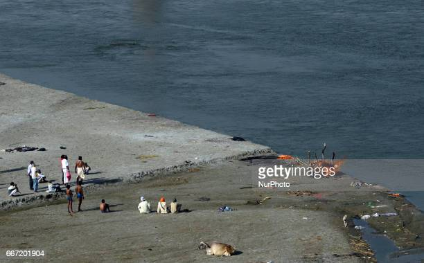 Indian hindu people gather near a dead body of their relative as they cremate on the polluted banks of Ganges river in Allahabad on April...