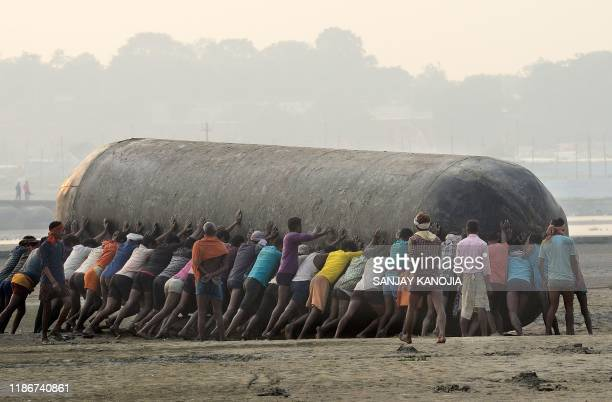 Indian labourers push a pontoon buoy in the banks of theGanges River as they build a floating bridges for the upcoming Hindu festival of Magh Mela in...