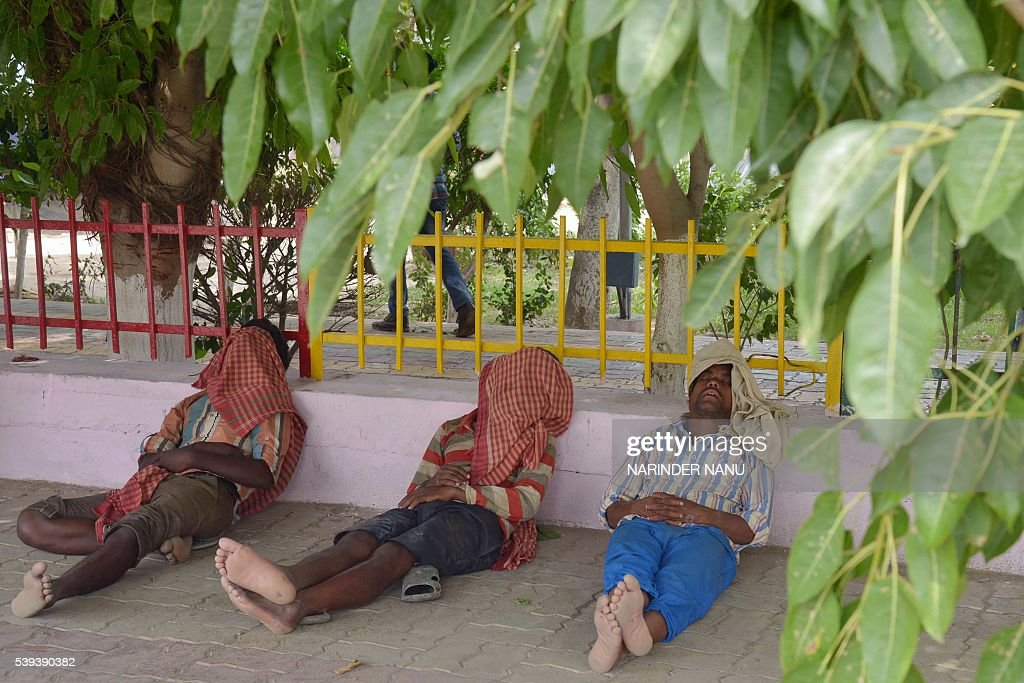 Indian labourers sleep under the shade of trees on a hot afternoon on the roadside in Amritsar on June 11 2016 / AFP / NARINDER NANU