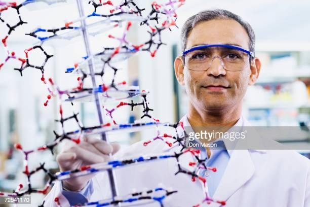 indian male scientist holding dna model - indian male model stock-fotos und bilder