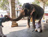 hindu indian man being blessed holy
