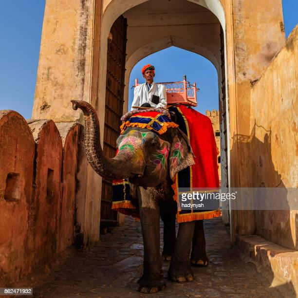 Indian man (mahout) riding on elephant near Amber Fort, Jaipur, India
