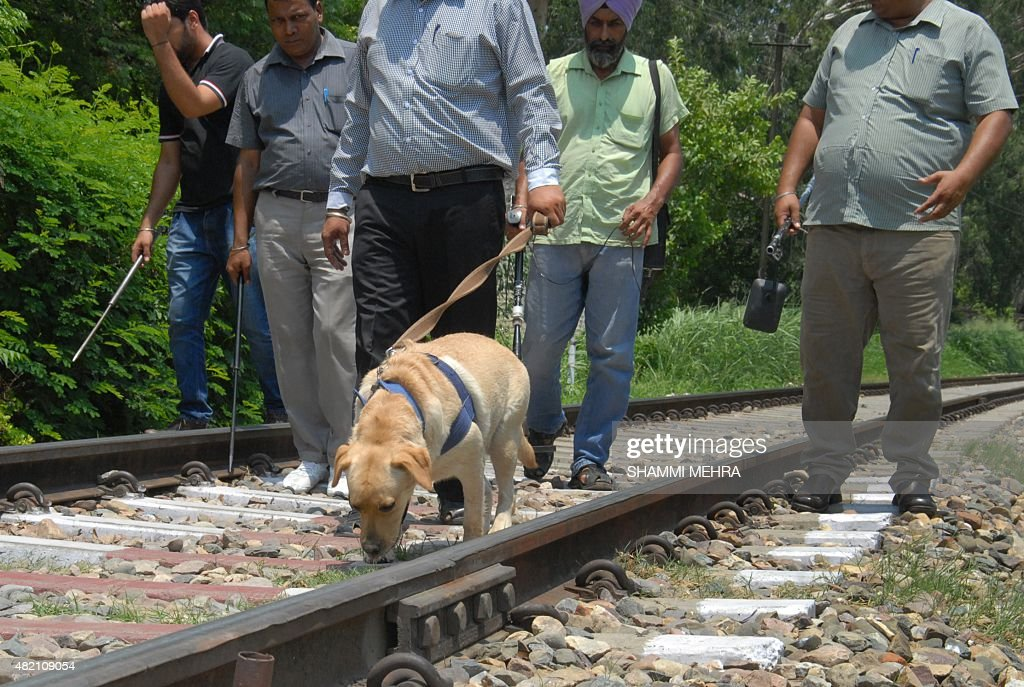 Indian members of Jalandhar`s Bomb Detective Team with a sniffer dog conduct an operation along the railway tracks in Jalandhar on July 27 2015...