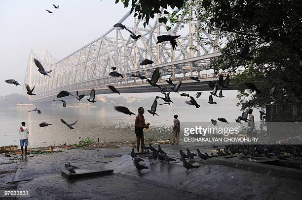Indian men perform rituals after taking a morning bath in the River Ganges as a Britishbuilt bridge looms in the background in Kolkata on November 11...