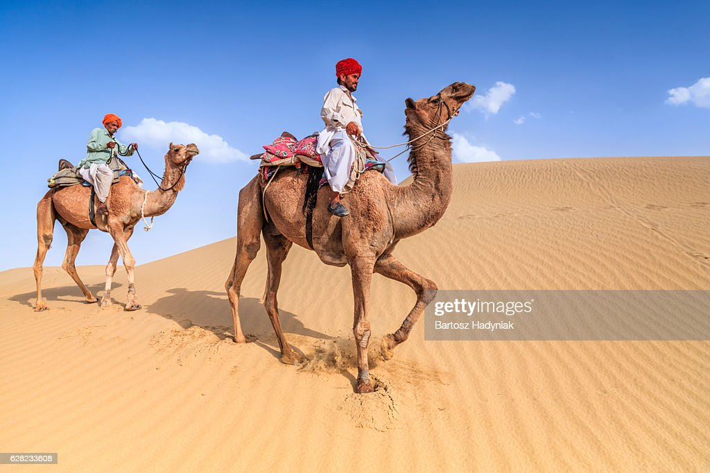 Indian men riding camels on sand dunes, Rajasthan, India : Stock Photo
