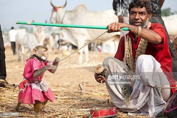 インドのモンキートレーナーでプシュカルフェアインド - 動物調教師 ストックフォトと画像