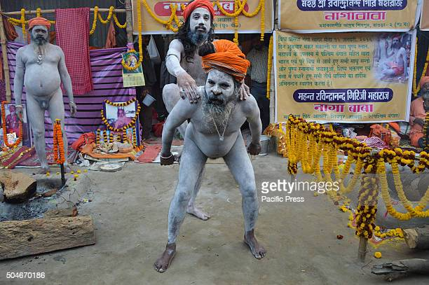 Indian Naga sadhu showing off bodily feats involving penance in Gangasagar transit camp at Kolkata Sadhus form all over the country started to gather...