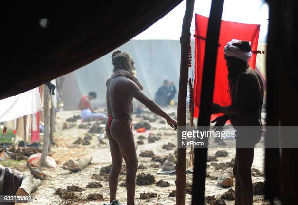 Indian naga sadhus or naked holy men stand outside their camp as they prepare for a ritual at sangam confluence of Rivers Ganges Yamuna and mythical...