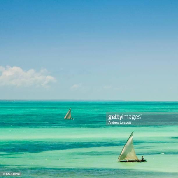 ザンジバル沖のインド洋 - インド洋 ストックフォトと画像
