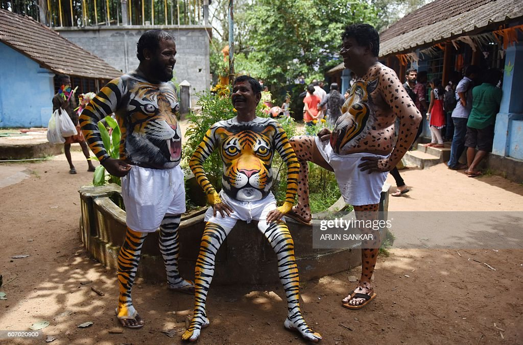 TOPSHOT - Indian performers wearing body-paint depicting tigers wait for the artwork to dry as they prepare to take part in the 'Pulikali', or Tiger Dance, in Thrissur on September 17, 2016. The folk-art event is held every year in the town during the 'Onam' festival. / AFP / ARUN