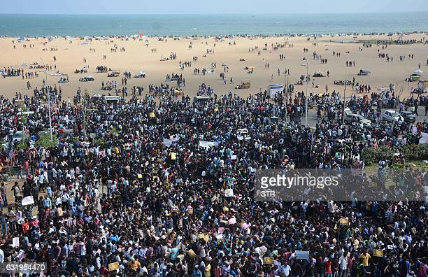 Indian protesters gather during a demonstration against the ban on the Jallikattu bull taming ritual at Marina Beach at Chennai on January 18 2017...