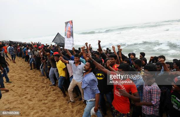 Indian protesters shout slogans during a protest against the ban on the Jallikattu bull taming ritual at Marina Beach in Chennai on January 23 2017...