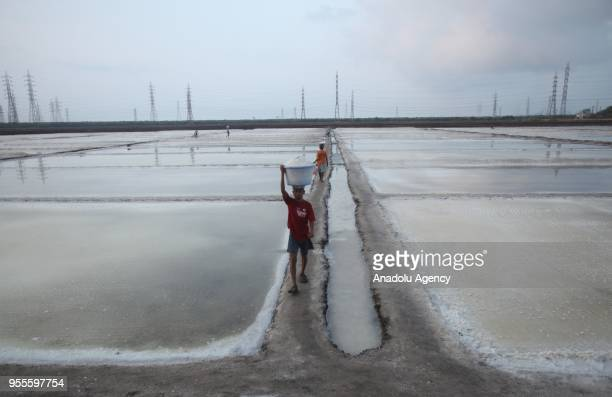 Indian salt lake workers carry salt in basins collected at a salt pan in Mumbai India on May 07 2018
