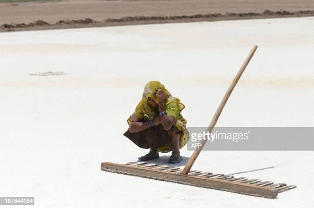 Indian salt pan worker Madhuben looks down while salvaging the mineral from flooded salt pans near Odu village in the Little Rann of Kutch region...